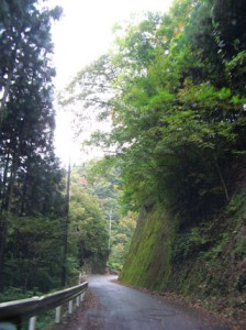上野村付近